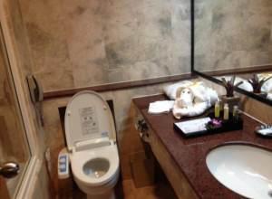 Vì sao người Nhật đi vệ sinh không dùng giấy?